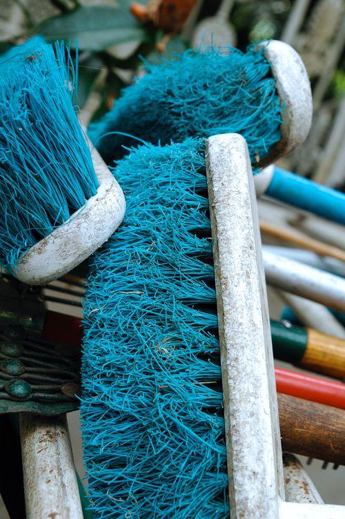 Blue brooms