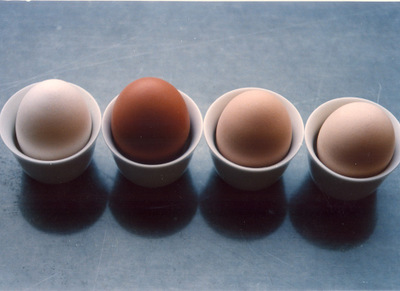 Four_eggs_small